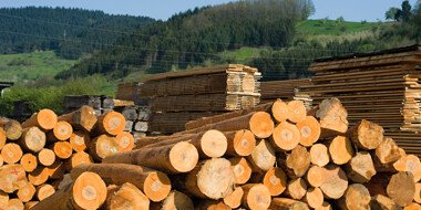 Paper Machinery & Timber Industries